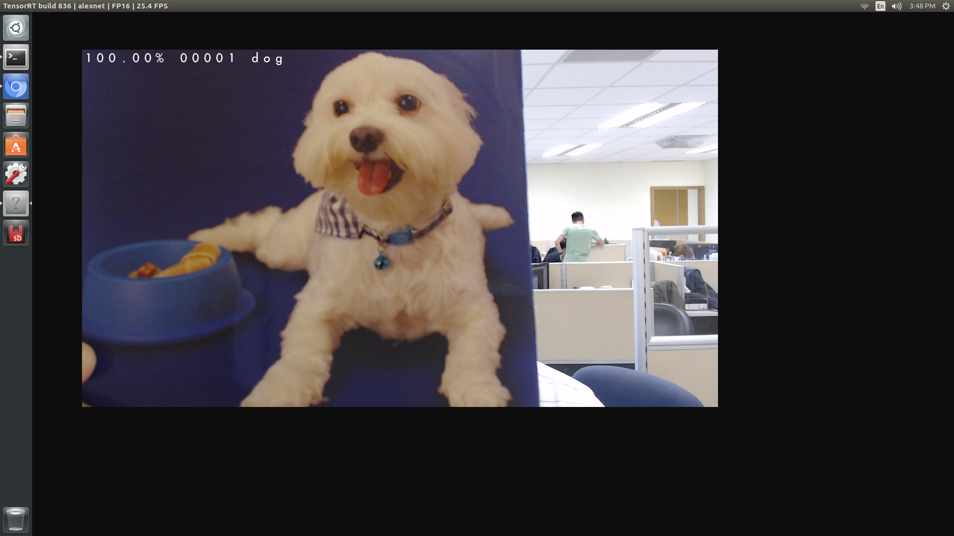 Screenshot of TensorRT with deeplearning-cats-dogs-tutorial model correctly classified the picture as class #1, i.e. dog
