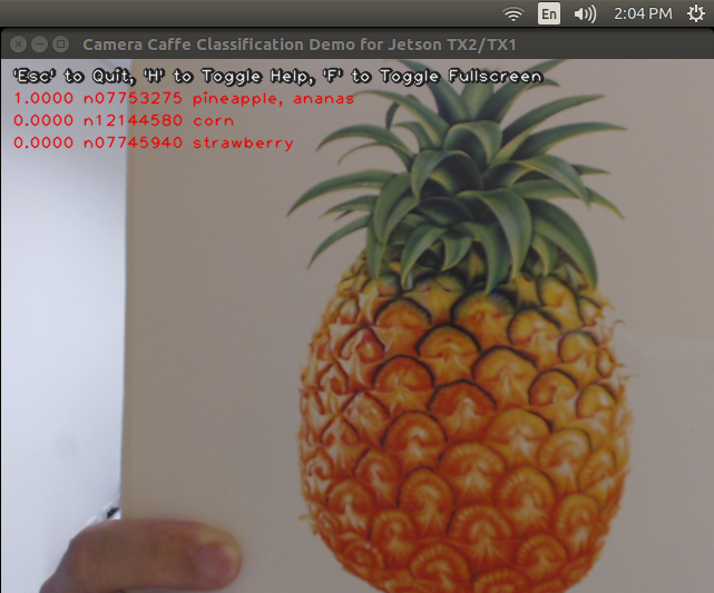 How to capture and display camera video with python on Jetson TX2